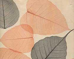 Натуральные обои Листья