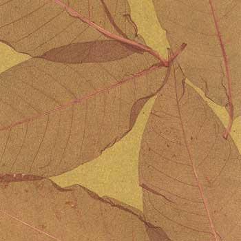 Обои натуральные ЛистьяS-9