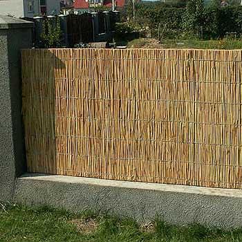 Забор из тростника 120 x 600 см