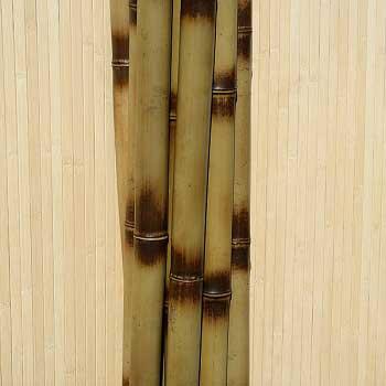 Бамбук узелковый 4 - 5 см. Купить бамбуковые стволы, палки, хлысты, опоры.