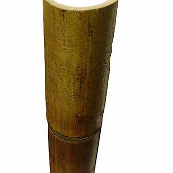 Половинка бамбука стандарт 8 - 9 см