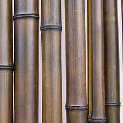 Бамбук ствол 4 - 5 см Венге
