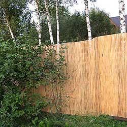 Забор из тростника 200 x 600 см