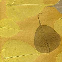 Натуральные обои Листья Прима Дорадо