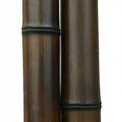 Бамбук ствол 9-10 см Венге