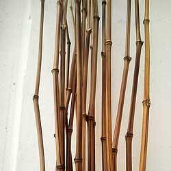 Бамбуковый хлыст удилище