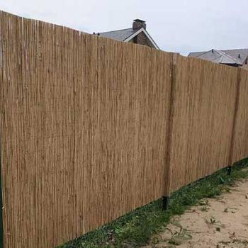 забор из тростника для дачи