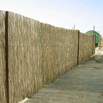 Тростниковый забор купить