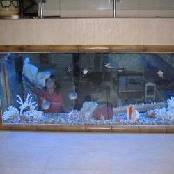 Оформление аквариума бамбуком