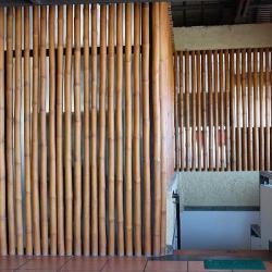 Бамбук в качестве перегородки