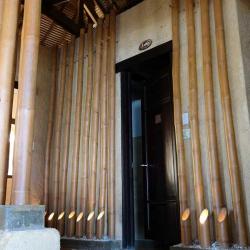 Бамбуковые стволы в дизайне