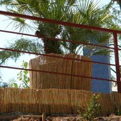 Тростниковые маты в интерьере