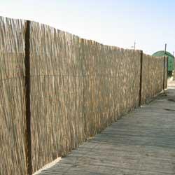 Забор из тростника на пляже