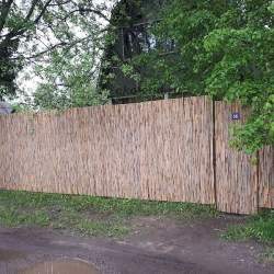 Тростниковые заборы на даче